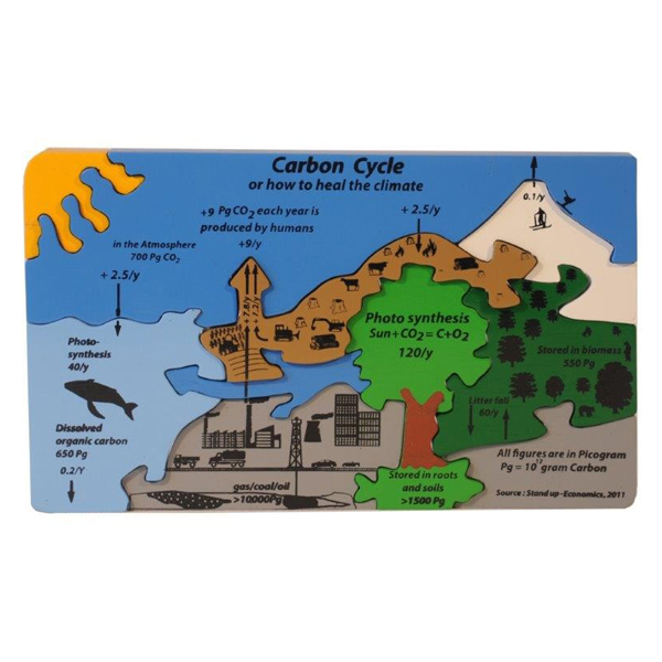 Carbon Cycle Puzzle